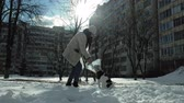 собака : woman walking with a dog