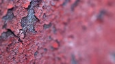 old metal texture : UHD video - Peeling paint on an old concrete wall of the destroyed building. Shallow depth of field
