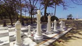 knight : Black and white checkered board and pieces of a life size chess set. arranged in the shade. on a luxury resort hotels private. tropical beach. Video FullHD