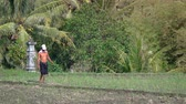 кресты : BALI. INDONESIA - CIRCA JUL 2015: A local man crosses a rice field. Video UltraHD 4k Стоковые видеозаписи
