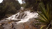 latão : Whitewater tumbles and roars down the rocky course of Datanla Waterfall. near Da Lat. Vietnam. 4k video with sound.