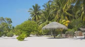 pohostinství : Umbrella shaped sun shelter made from nipa. on a white sand tropical beach paradise at this exotic resort in the Maldives. Dostupné videozáznamy