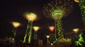 skywalk : SINGAPORE - CIRCA MAY 2017: Group of giant fantastic trees in Gardens by the Bay at night. Singapore. Video 4k Stock Footage