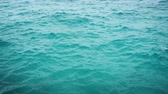 osamělost : Surface of the sea near the shore. Stock footage in 4k resolution
