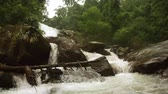 sesleri : A large waterfall in the wild southern forest in Thailand. Chiang Mai. Video with sound