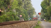 newfoundland : HIKKADUWA. SRI LANKA - DEC 2016: Very old. diesel passenger train passes through residential area in Sri Lanka. Ultra HD 4k video with sound.