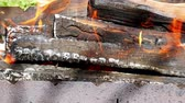 vibrance : Firewood burning in a metal tray in a spring sunny weather, panorama close-up