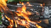 vibrance : Burning firewood with tongue of flame in a rusty metal tray for the cooking outdoors, close-up Stock Footage