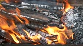 vibrance : Burning firewood with tongue of flame in a rusty metal tray outdoors over green grass, close-up