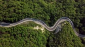 Aerial View Of The Mountain Road between green trees Vidéos Libres De Droits