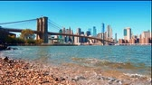 США : Waterfront view of downtown Manhattan with Brooklyn Bridge and financial district skyscrapers in New York City