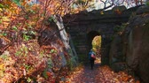 Центральная Америка : Walk in Central Park in Autumn with foliage in Midtown Manhattan New York City Стоковые видеозаписи