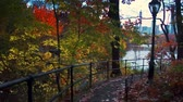 américa central : Central Park walk view in Autumn with foliage in Midtown Manhattan New York City Stock Footage