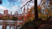 Central Park walk view in Autumn with foliage in Midtown Manhattan New York City Stock Footage