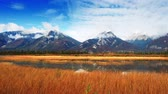 banff : Colorful grass and snow mountain at lake waterfront timelapse panning view in Jasper National Park, Canada.