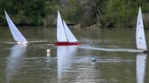 miniatura : Remote controlled sailing wooden yachts sail in a pond Stock Footage