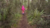 tongariro : Little girl lost in a rainforest. Travel concept. copy space Stock Footage