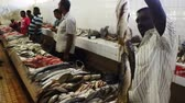 fishmarket : Fresh fish for sale in Nadi fish market in Viti levu Island, Fiji. Fisheries are the third largest natural resource of Fiji Islands.
