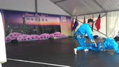 gelenek ve görenekler : Taiwanese Traditional Martial Arts performance during public event celebration of Taiwanese culture. Taiwan has a rich history of performing arts, inherited from mainland China.
