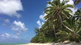 barışçı : Landscape view of Coconut palm trees on Titikaveka beach in Rarotonga, Cook Islands.