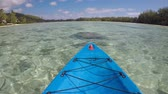 polinésia : POV (point of view ) of a person Kayaking Muri Lagoon Rarotonga Cook Islands