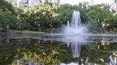 Brisbane Botanical Gardens in Brisbane city Queensland, Australia Стоковые видеозаписи
