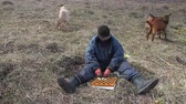 koza : An old man in messy clothes sits on a hill playing checkers, grazing a flock of his own goats against the backdrop of a withered nature Dostupné videozáznamy