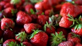 영양소 : Closeup of a bunch of fresh, large, ripe strawberries on the kitchen table before cooking, selective focus