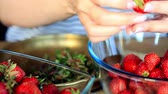 small bowls : Close up of female hands peel fresh large strawberries for later use