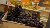 Close up of bunches of dark blue grapes. Stock Footage