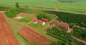 Бразилия : Small coffee plantation farm in the city of Victorian, São Paulo Brazil