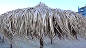napernyő : The sea wind blows on palm umbrellas from the sun on an empty sandy beach. HD video