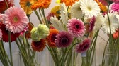 Beautiful pink, white and orange gerbera flowers in glass vases. HD video