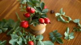 pohlednice : Ripe red briar berries on a branch on a wooden table