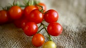 basket ball : small ripe red tomatoes on a table Vidéos Libres De Droits