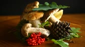 big leaf : white forest natural mushrooms on a wooden table Stock Footage