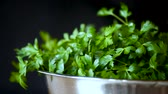 fresh green parsley isolated on the black background. Stock Footage