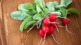 demet : fresh organic red radish on a wooden table Stok Video