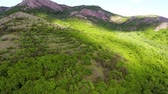 de faia : Aerial view mountain valley covered with forest