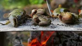 danube delta : Traditional baked fish on a bed of salt in Danube Delta Stock Footage