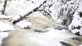 refração : Frozen mountain stream. Snowy and icy stones in chilly water. Icicle waterfall bellow, stony and snowy stream bank with fallen branches. Close focus.