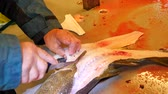 gutting : Worker cleaning and filleting fresh sea fish in a family factory. Dorsal cut and separation fillets from fish bones, removing guts.