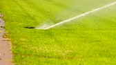distribuidor : Lawn grass on the football field sprinkles water in summer. Sprinkler Watering and Sports Field