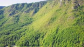 древесный : Green forest on a slope of ridge. Aerial of Montenegro mountains at sunny day Стоковые видеозаписи