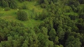 enrolamento : Flying over treetops of park with green medows, little stream and narrow paths