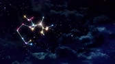 horoskop : Sagittarius zodiac sign forming from the twinkle stars with space background