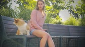 The young woman is sitting on the bench in the park with little dog. Corgi puppy is sitting in the park, nice summer day Filmati Stock