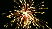 symbol : fireworks at night,holiday and wedding.