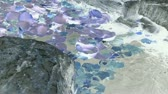 waterplant : Lotus leaf in pond,rockery stone and shaking water,ink style,Watercolor. Stock Footage