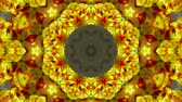 consecutivo : color lotus flower pattern wedding background,gorgeous orient religion fancy,fractal,structure. Vídeos